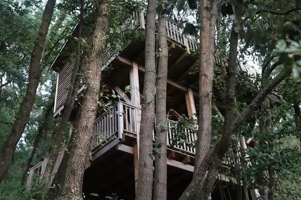 slapen boomhut frankrijk (12)