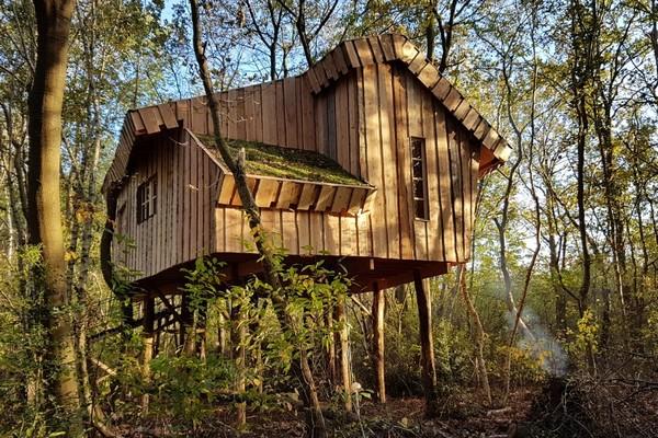 Origineel overnachten boomhut Nederland