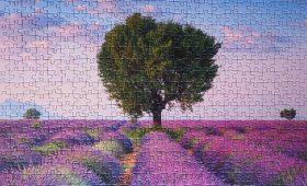 puzzel vakantiefoto