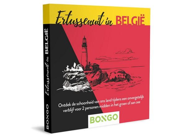 cadeaubon bongo uniek overnachten belgie