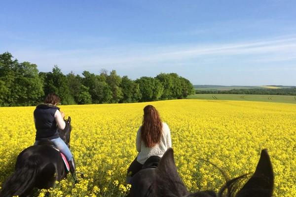uniek overnachten frankrijk boerderij gezinsvakantie paarden