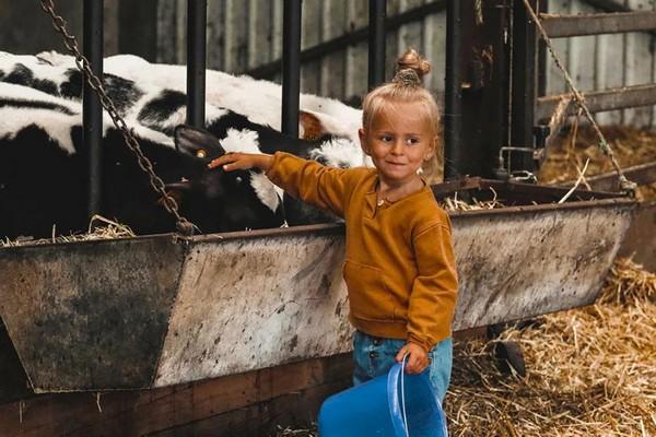 bijzonder overnachten boerderij belgie (3)